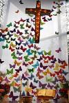 cross_butterflies